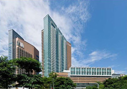 新加坡罗彻斯特公园