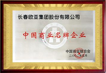 中國商業名牌企業