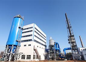 神木红柳林29MW煤粉锅炉